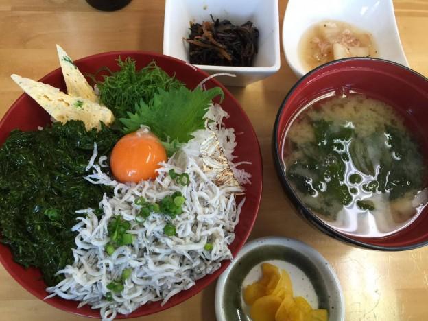 2/4 しらす&あかもく丼!長井の旬・地産地消が味わえるお店「夕凪」