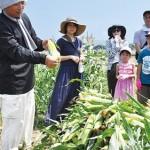 タウンニュース 横須賀版に、地域の魅力体験事業シテコベについて掲載いただきました!