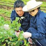 三浦半島で農福連携をサポートいただける方大募集!